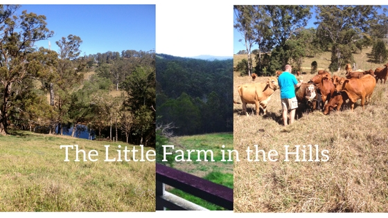 The Little Farm in theHills